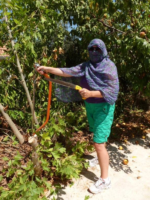 Cunning disguise put on in order to cut down neighbouring trees at the villa in Turkey!