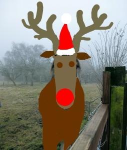 Ah Rudolf!