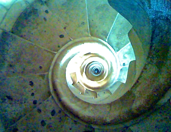 A souped up stair case in the Sagrada Familia!