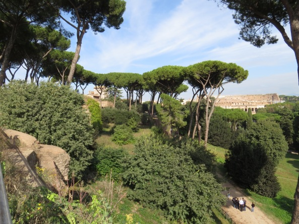 This was taken at Palentine Hill which is close to the Colosseum and the Forum. It is beautiful, calm and green with huge trees. You would not believe it is in a large city!